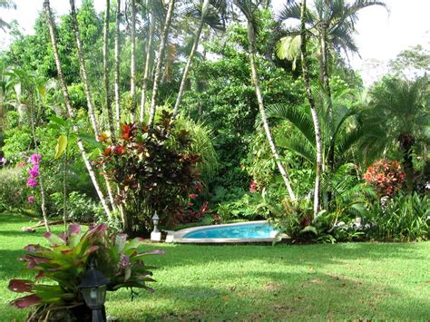 tropical backyard landscaping tropical gardens pictures home design inside