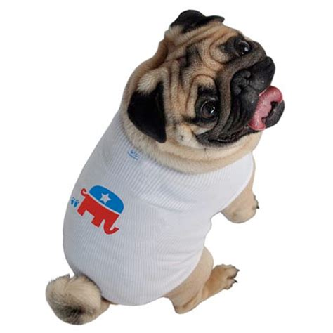 puppy shirts republican shirt political clothes collars and leashes at glamourmutt