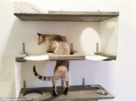 Modern Cat Tree Ikea by Cat Mad Couple Construct Furniture For Pets And Sell Them