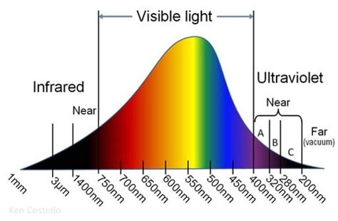 Wavelength Range Of Visible Light by Interests In Science What Is The Sensitivity And