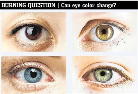 how to change your eye color with your mind eye color eye color question and answers firmoo answers