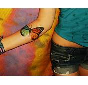 Tattoo Images Under Butterfly Tattoos Html Code For Picture
