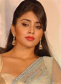 ... Saran Hot Photos - Hot-Bollywood-Actress-Shriya-Saran-Hot-Photos_002