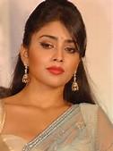 ... Saran Hot Photos - Hot-Bollywood-Actress-Shriya-Saran-Hot-Photos_002