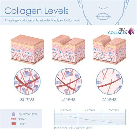 Collagen Skin look younger with ideal collagen l arginine plus 174