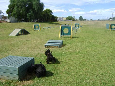 how to build a dog park in your backyard pet safe dog park contest orange live