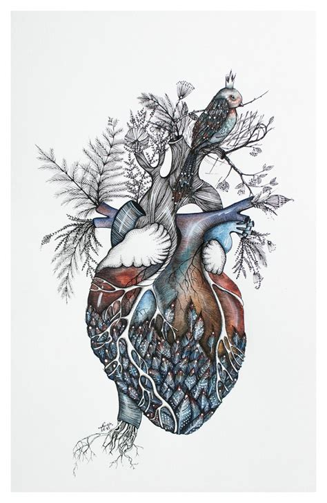 anatomical heart art this really isn t anatomically