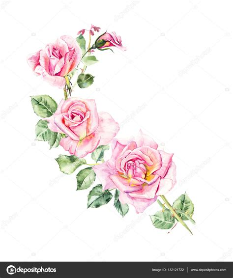 download mp3 darso ros bodas pattern from pink rose wedding drawings stock photo