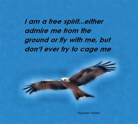 A Free Spirit i m a free spirit admire me from the ground or fly with
