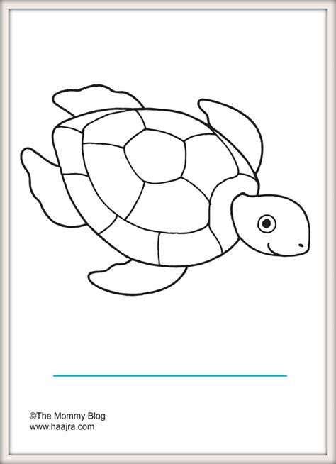 preschool coloring pages turtles sea animals printable colouring sheets free the mommy blog