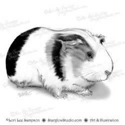 guinea pig digital clip art digital stamp digital download