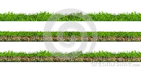 grass section green grass sections royalty free stock photography
