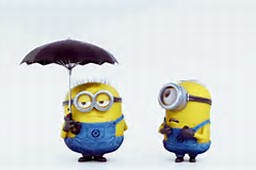 Minions Despicable Me Animated GIF