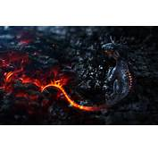 Mythical Creatures Artwork Small Dragons Tails Fire Lava Smoke Magma
