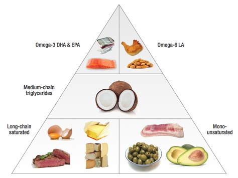 6 healthy fats negative health effects of omega 6 polyunsaturated fatty