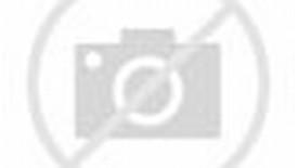 Bruce Lee Typography