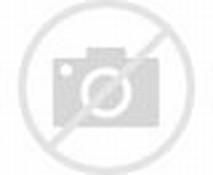 El Escudo Oficial Del Municipio De Zongolica Pintado Al Leo