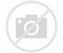 Diatas beberapa Koleksi Gambar Bayi - Gambar Bayi Lucu dan sobat bisa ...