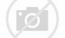 Fishes 3D Desktop Wallpaper