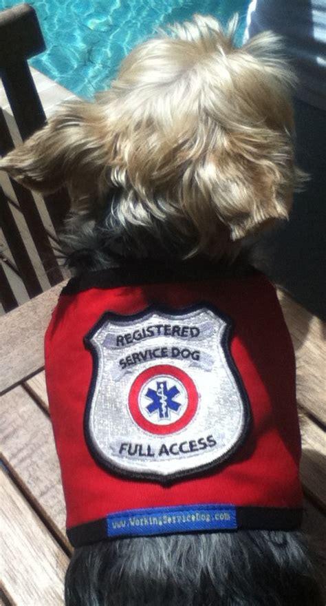 service vest for dogs registered service vest for small service dogs