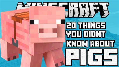 20 things you didn t know about your favorite classic hollywood 20 things you didn t know about the pig in minecraft youtube
