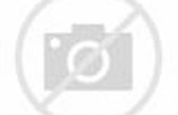 Taman Nasional Gunung Merapi di Yogyakarta
