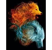 Fire &amp Ice  The WOLF My Spirit Animal Pinterest