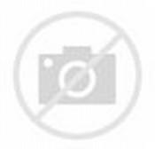 Gajah Kartun