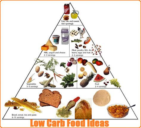 low carb food low carb or low diets which are better for weight loss models picture