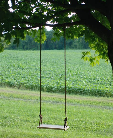 build tree swing how to build a swing everyone will enjoy