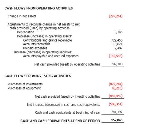 sle cash flow statement for non profit organization understanding nonprofit financial statements