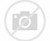 Gambar Monyet Lagi Nelfon