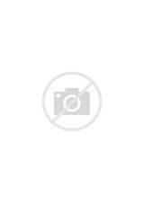 Coloriage de noel - une étoile de Noël a imprimer