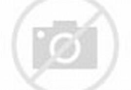 Model Desain Rumah Kayu 2015   Model Desain Rumah