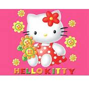 Hello Kitty  Wallpaper 182088 Fanpop