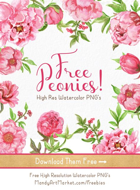 free printable watercolour flowers free watercolor peonies clipart now available 1 18 pretty