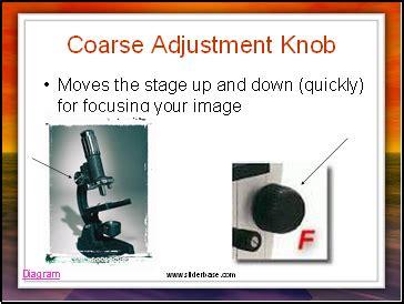 Stage Adjustment Knob by Stage Sliderbase