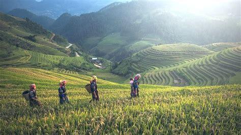 alimentazione ecosostenibile l alimentazione sostenibile attenta alla biodiversit 224