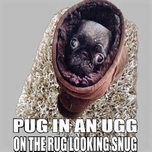 mops teppich pug ugg rug