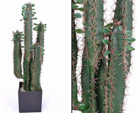 Sho Kafen plastik kaktus wolfsmilch 75cm im kunstpflanzen shop kaufen