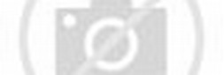 Funny Animated Shark