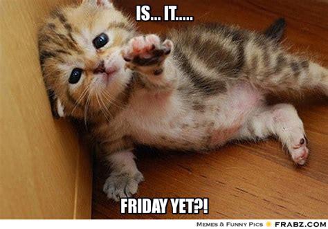 Is It Friday Yet Meme - is it helpless kitten meme generator captionator