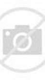 Simple Elegant Wedding Gown