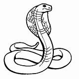 COBRA : Coloriage Cobra en Ligne Gratuit a imprimer sur COLORIAGE TV