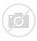 Tribal Lion Tattoo Stencil