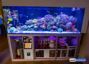 Arranging Living Room wesley vreeswijk is the ultimate reefing control freak