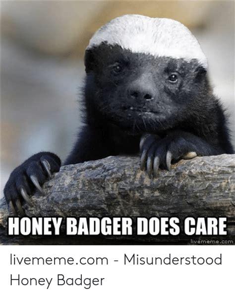 honey badger  care livememecom livememecom