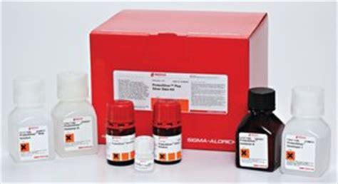 Jual Reagent Sigma proteosilver plus silver stain kit sigma aldrich
