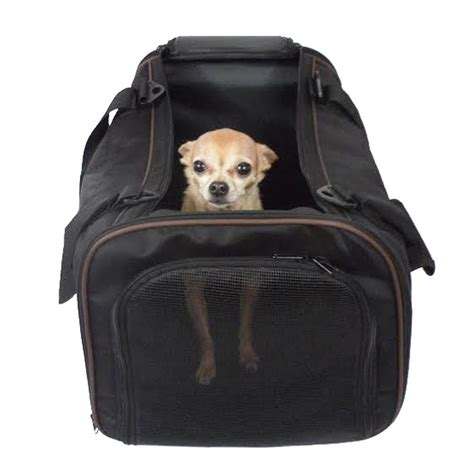 pet pet pawfect pet pet carrier large soft sided airline approved for travel