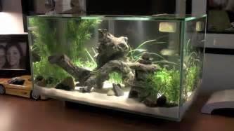 Fluval EDGE Fish Tank [HD]   YouTube